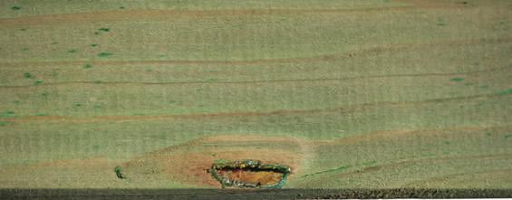 Holzmerkmale, Harzaustritte