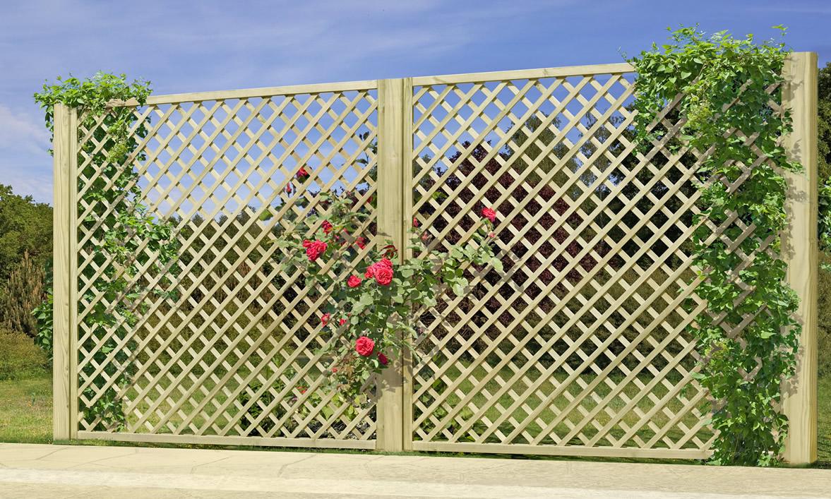 Rankzäune mit Gitter 6 x 6